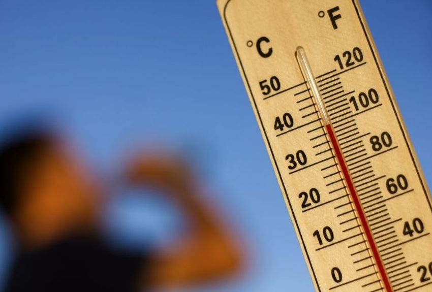 Alerte canicule en Europe : comment y faire face