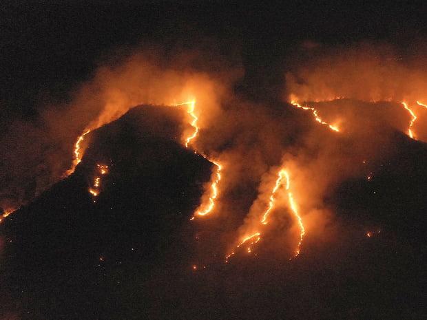 Incendies en Amazonie, le pire désastre écologique ?