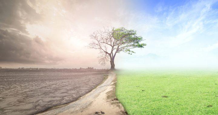 La terre est-elle condamnée ?