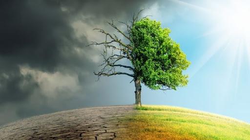 Changement climatique : avons-nous atteint le point de non-retour ?