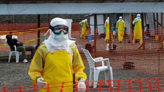 Ebola : faut-il craindre une pandémie