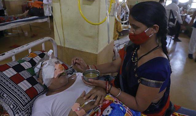 «Champignon noir» : zoom sur cette infection qui touche l'Inde